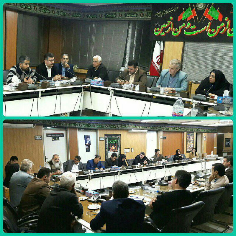 مشکلات اهالی رسانه استان در کمیسیون فرهنگی شورا بررسی شد